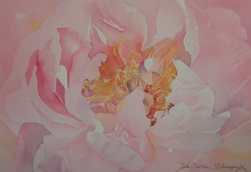 Watercolour painting of a Peony